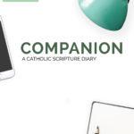 Companion 2020 SET