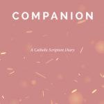 Companion Set E-book 2021