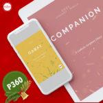 E-Copy Bundle: Companion + Gabay